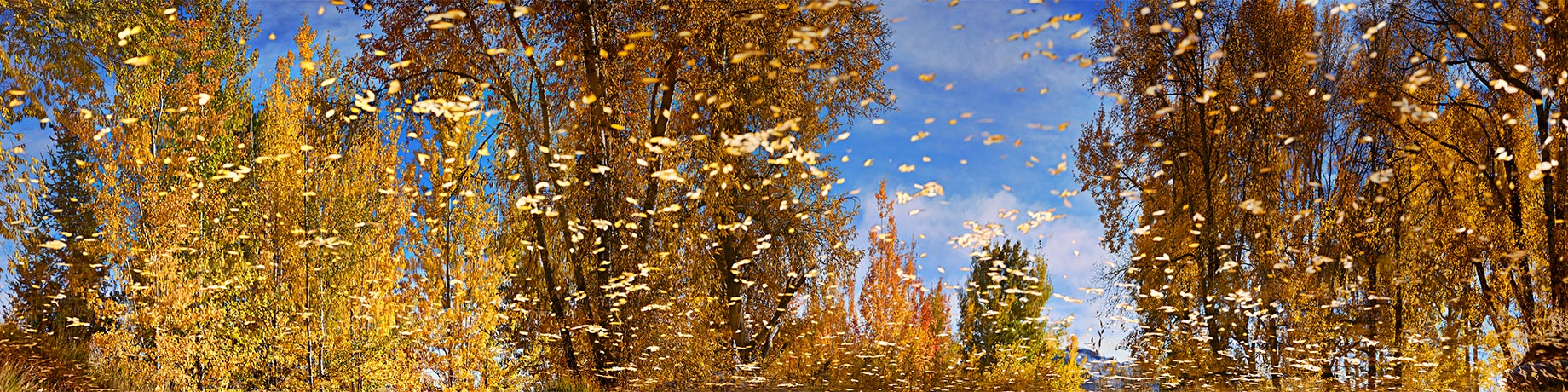 aspen-reflection-Vidaurre-jose